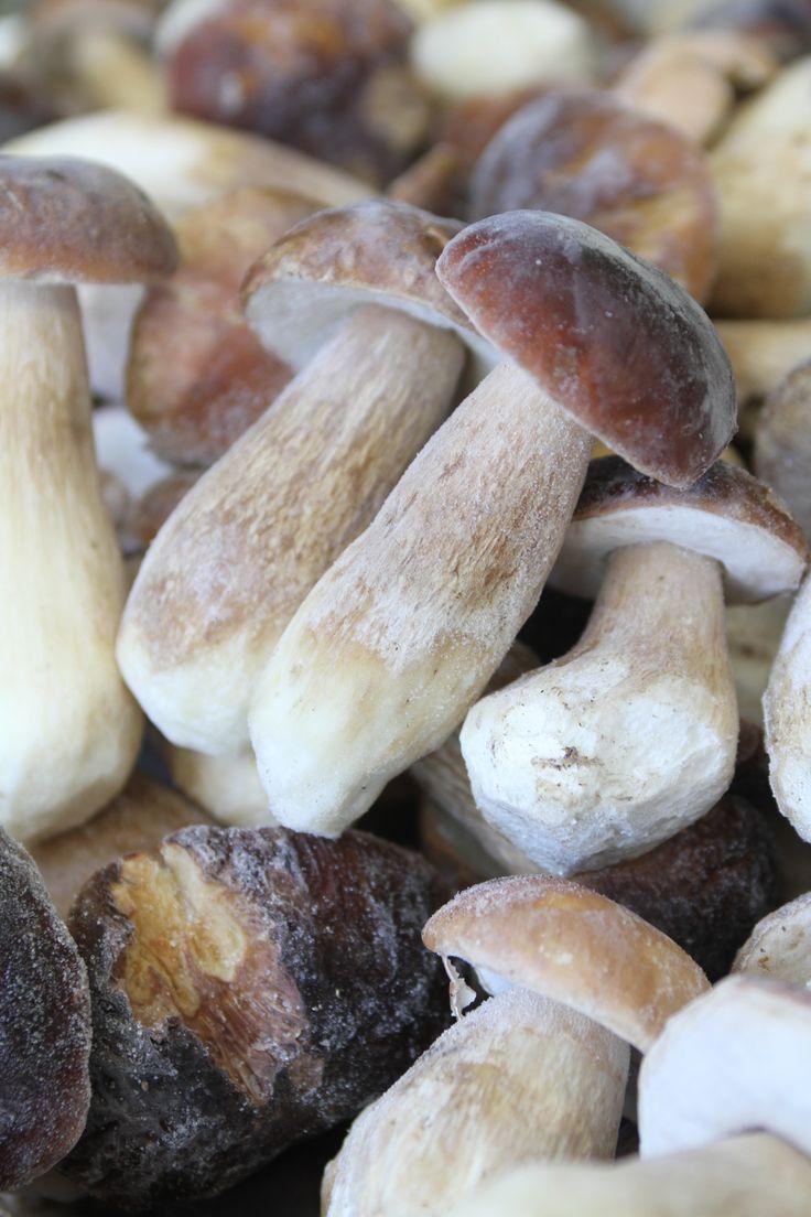 funghi porcini congelati, frozen porcini mushrooms