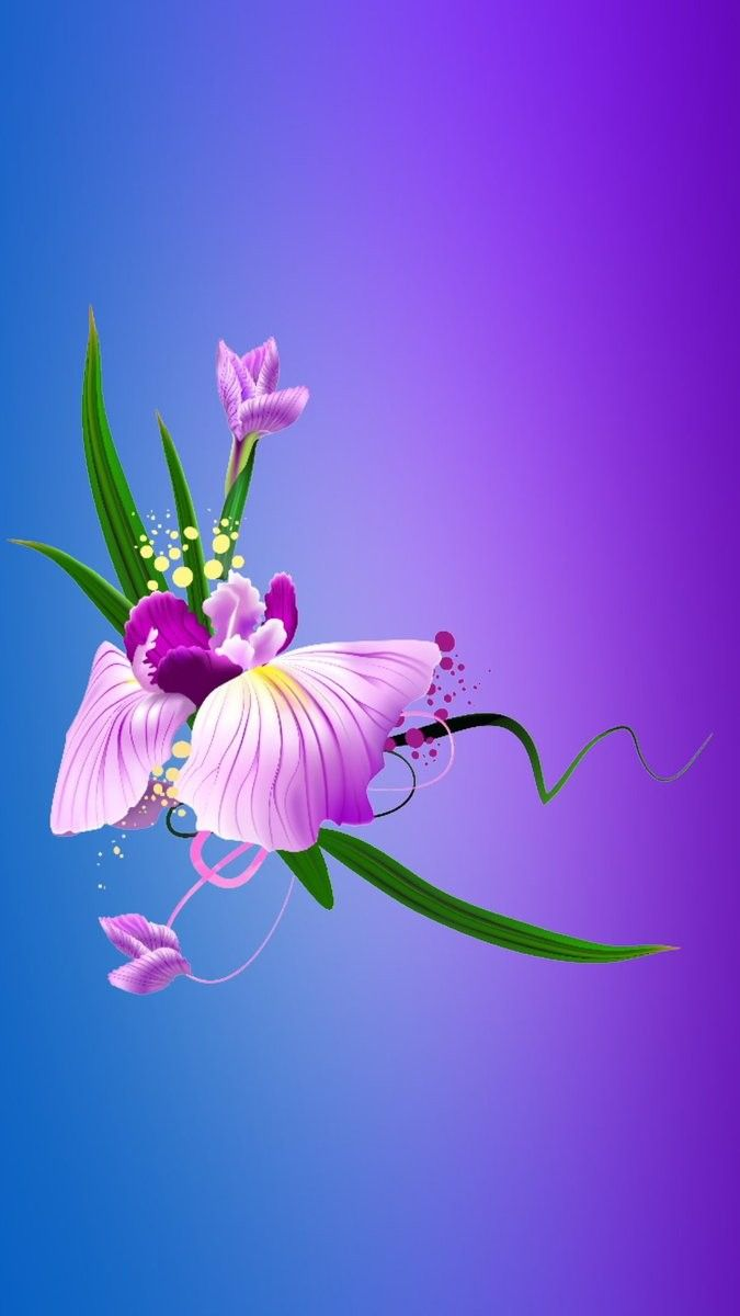 Wallpaper By Artist Unknown Colorful Wallpaper Flower Wallpaper Beautiful Flowers Wallpapers