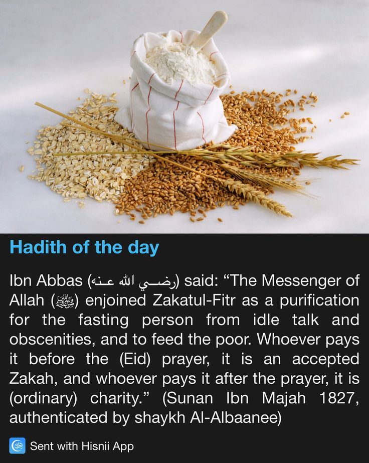 Hadith of the day                                                       …