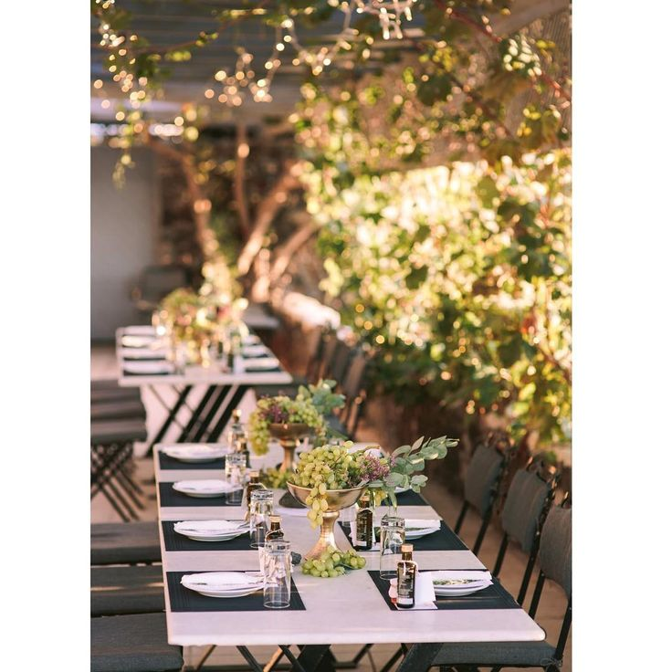 Wedding Reception at Winery
