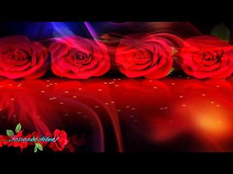 Red roses with love ...  Select the optimal resolution 720p  Thank you all for viewing and comments! All the best!  http://www.youtube.com/user/bluesensation75?feature=mhee  http://www.youtube.com/user/TBluedream?feature=watch