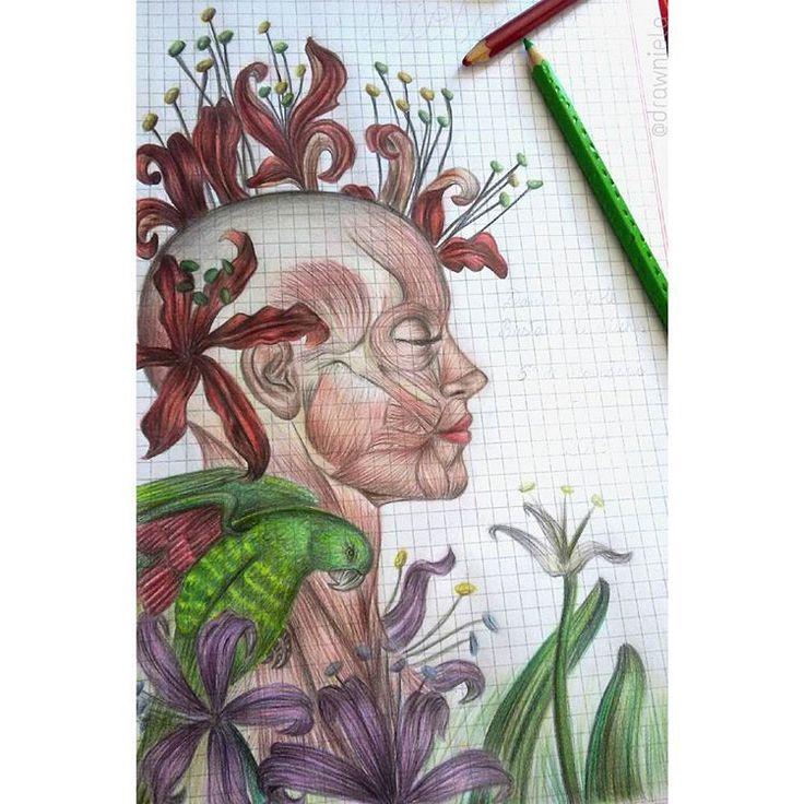 Caratula de Biologia...😆🎨 #dibujo #draw #drawing #art #colorful #artwork…