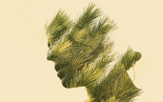 Spirit of Nature 9 by Gianluca Scolaro