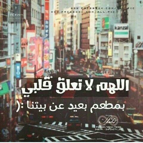 هههه قصة حياتي انا وشاورما أبو العبد