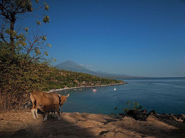 Location : Bali - Indonesia