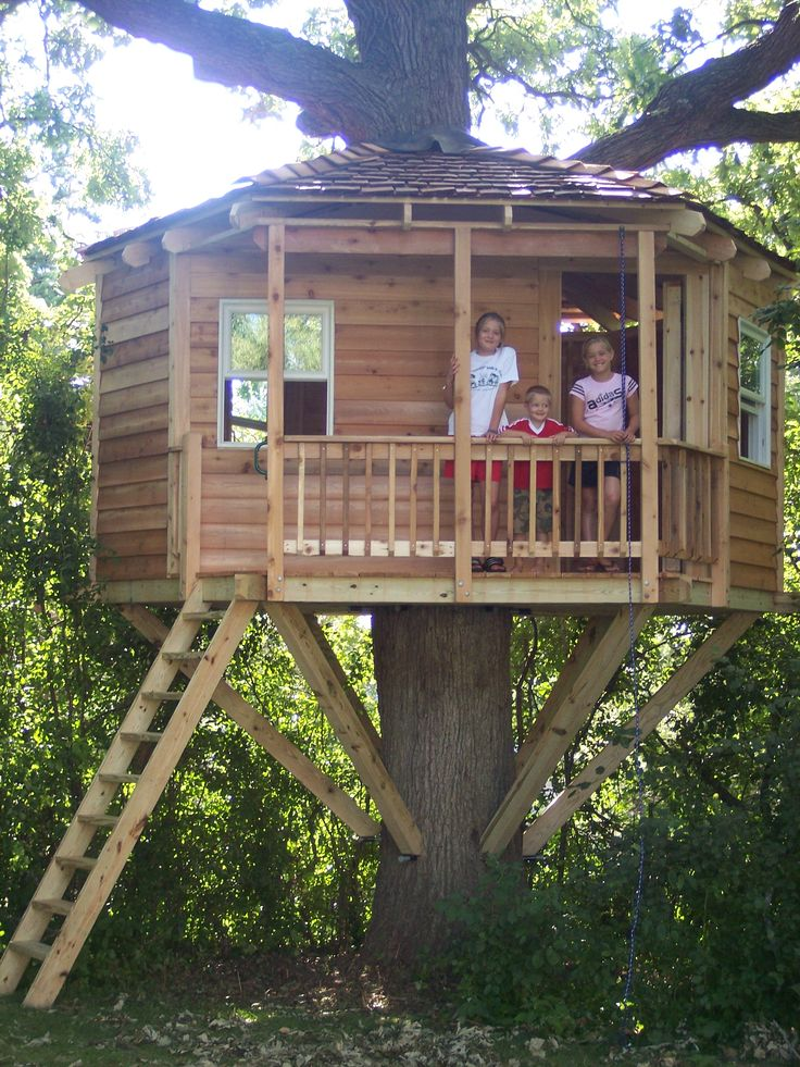 52 best tree houses for adults images on pinterest tree for Adult treehouse plans