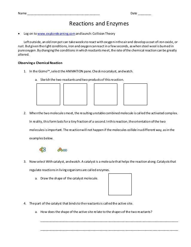Enzyme Reactions Worksheet Answer Key Enzyme Work Sheet Middle School Science Experiments Solving Quadratic Equations Interactive Science Notebook