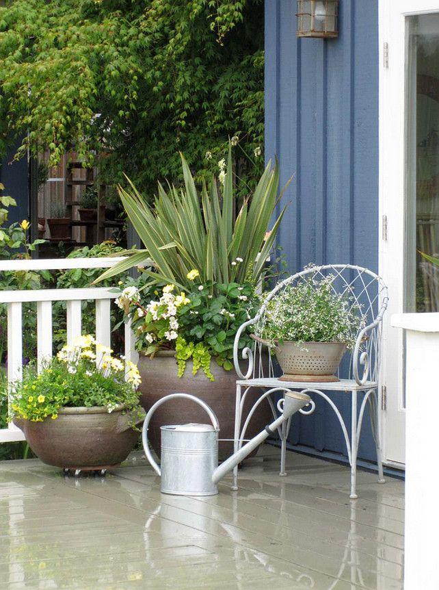 """Комнатные растения.  Посадочные.  Плантатор идеи.  Передние горшки дверь.  Растения, используемые на плантаторов в основном бледно-желтые, белые, цветы и листья - Большой контейнер: Phormium, зеленый лайм прицеп вербейник монетный 'AUREA """", большая масса зеленого на слева Клубника завод - когда-нибудь Тип подшипника (съедобные), Белые цветы справа находятся Далия, бегония richmondensis белый, желтый Остеоспермум разнообразие бледно, миниатюрный бледно-желтого плетистая роза также…"""