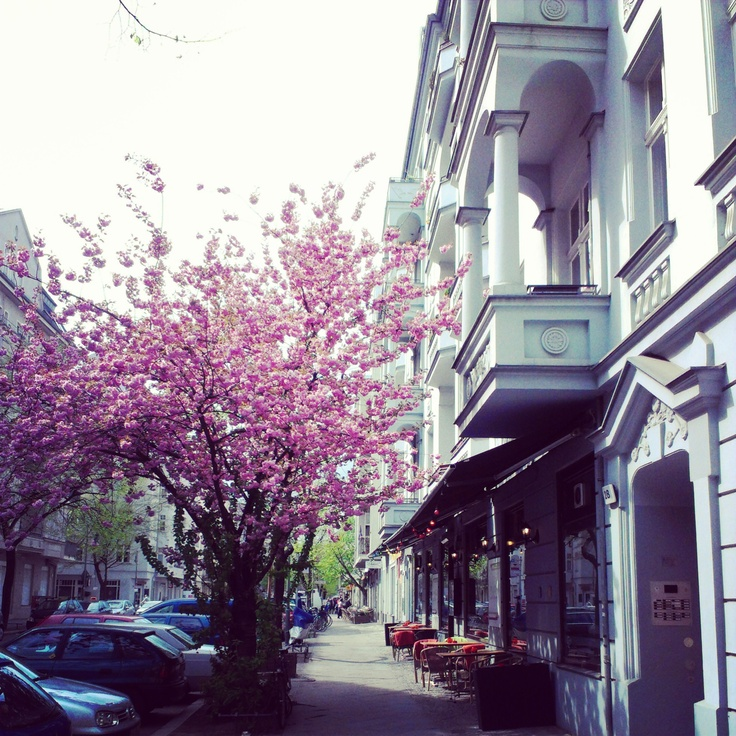 Berlin Prenzlauer Berg 1st May