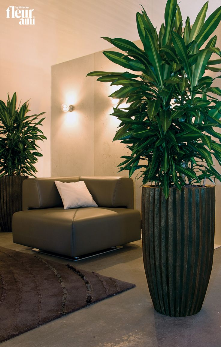 SAHARA planter by fleur ami ● Pflanzgefäß von fleur ami