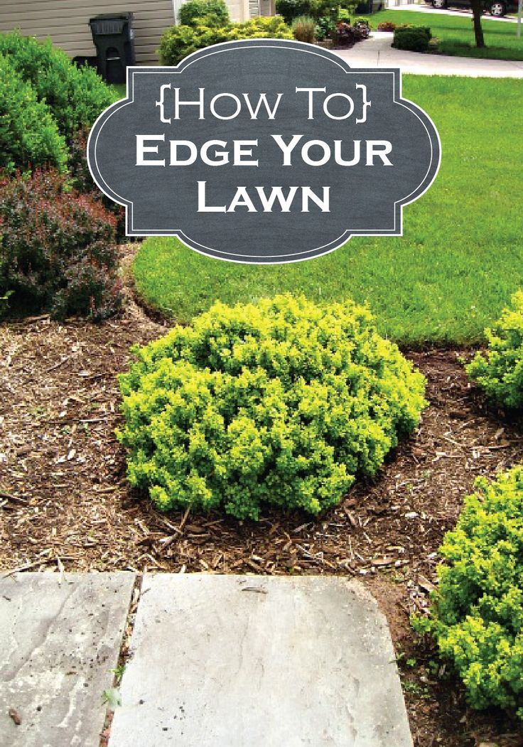 Check Out These Tips And Edge Your Lawn Like A Professional This Summer! Patio  IdeasLandscaping ...