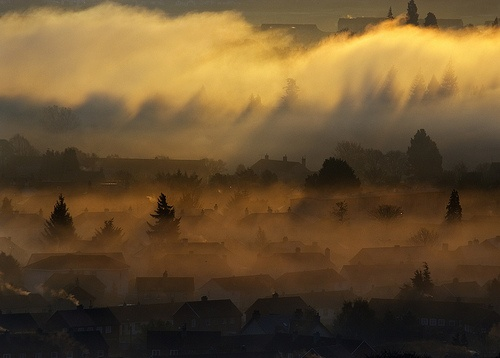misty morning: Misty Mornings