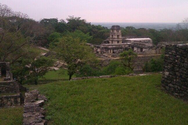 Palenque ( Mexico )