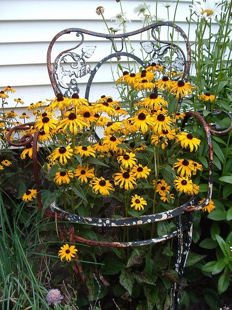 17 Best Images About Outdoor Flower Container Ideas On