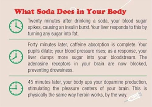 Soda: Fit Health, Diet Sodas, Healthy Eating, Drinks Diet, Sodas Yucky, Healthy Food, Drinks Sodas, Health Fit, Fit Motivation