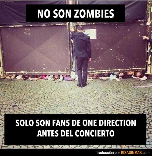 No son zombies. Solo fans de One Direction antes del concierto.