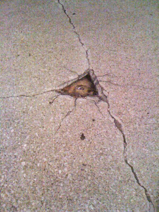 """""""Hello . . . Is there anybody out there? Just nod if you can hear me!"""" (By David Zinn)."""