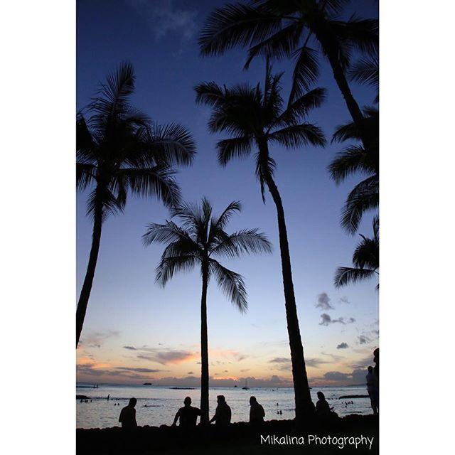 【miiiiika】さんのInstagramをピンしています。 《palm trees #hawaii #waikiki #beach #palmtrees #sunset #twilight #sky #clouds #sea #silhouette #ハワイ #ワイキキ #ビーチ #ヤシの木 #夕陽 #夕暮れ #海 #空 #雲 #シルエット #canon #eos6d #nofilter》