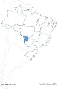"""A Planície do Pantanal ocupa quase toda metade oeste de Mato Grosso do Sul e sudeste de Mato Grosso (quase 80% de toda a área do bioma Pantanal está situado nesses dois estados) se estendendo para além do território brasileiro, alcançando áreas da Bolívia, Paraguai e extremo norte da Argentina, recebendo a denominação de """"Chaco"""" nesses países. É a maior planície inundável do planeta."""