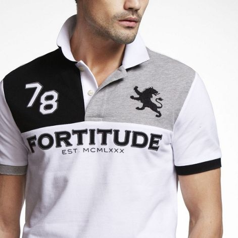 love the solid blocks of color combined with iconic imagery and typography...don't the huge price tag for a polo...from Express...