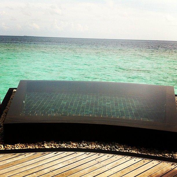Skönt med egen pool i water villan på #constance #halaveli #maldiverna dopp i havet eller poolen? #jordenruntmedving #vingresor #ving Läs mer om Maldiverna på http://www.ving.se/maldiverna/maldiverna