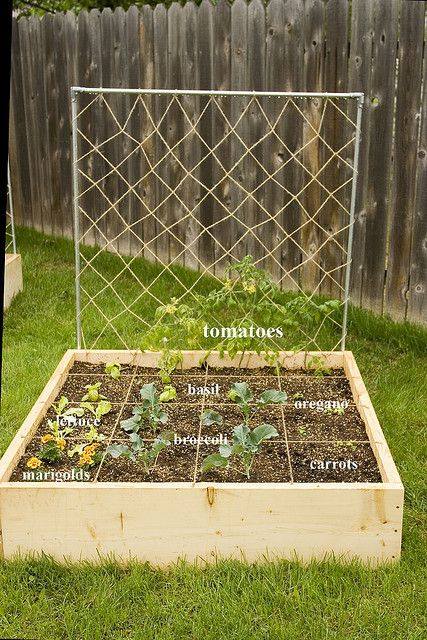 garden box organization--> I feel like we could TOTALLY do this. and make it the best garden box ever.