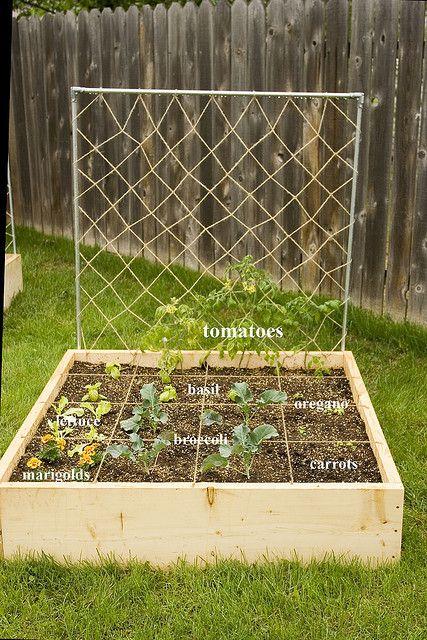 garden box organization