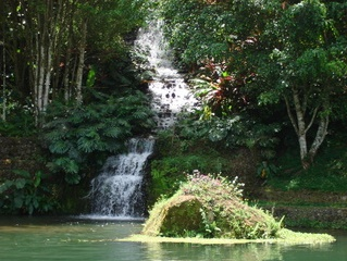 The Pearl of Cartago