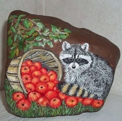 hand painted rock - Raccoon and apples - direct from KY artist (04/09/2012)