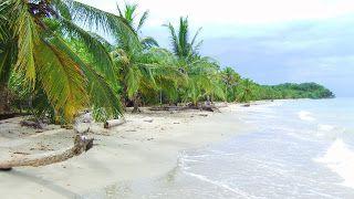 #Cahuita #Costa #Rica