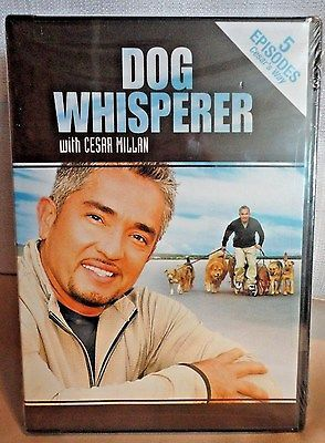 Dog Whisperer With Cesar Millan 5 Exciting Episodes DVD - Ships Quick/Free