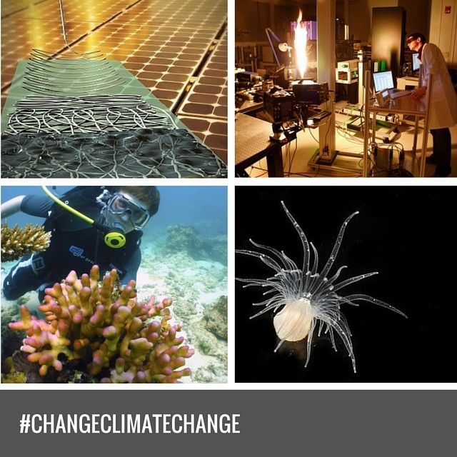 KAUST is uniquely positioned to address climate change challenges for the benefit of Saudi Arabia and the world. The location of the University on the shores of the Red Sea allows immediate access to a unique marine environment that is saltier and warmer than most bodies of water. #ChangeClimateChange #DestinationKAUST