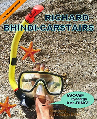 WOWF, nyaaargh, ker-BINGG! by Richard Bhindi-Carstairs https://www.amazon.com/dp/B07B3145LS/ref=cm_sw_r_pi_dp_U_x_Xv2NAbA1Y2WQZ