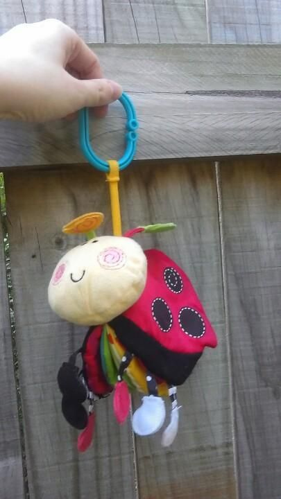 Found on 21 Jul. 2015 @ Roghan Rd, Taigum, 4018, Australia. Ladybug pram toy found outside AngliCare on Roghan Rd, just before 3PM. Visit: https://whiteboomerang.com/lostteddy/msg/djgcuc (Posted by Cassie on 21 Jul. 2015)