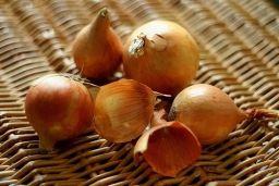 Польза луковой шелухи для сада и огорода - Садоводка