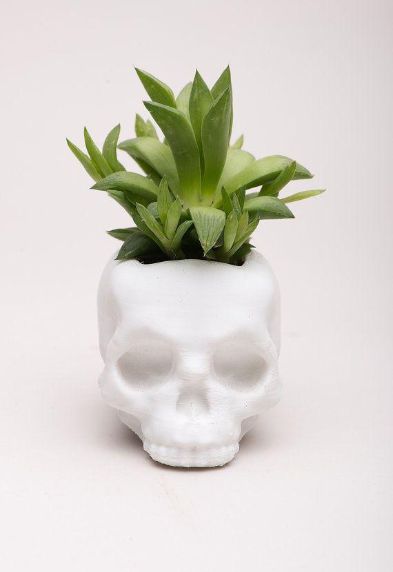 Skull Planter, 3D Printed