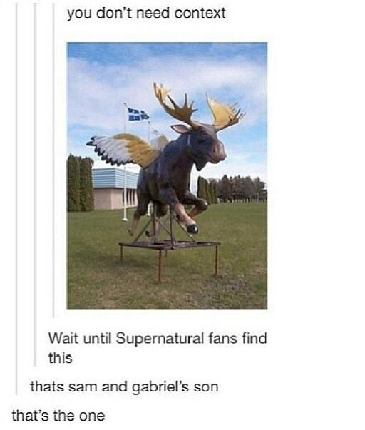Haha Sam and Gabriel made a moose angel baby. That's simultaneously the most disturbing and most hilarious thing I've heard all day
