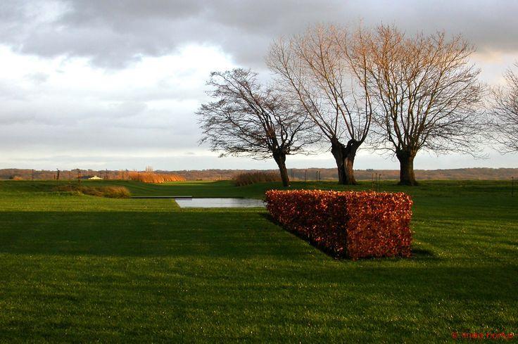 landschapstuin hennuyères | www.lineahortus.be