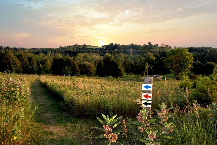 Take a walk on the trails at Ste. Anne's Spa to view the rolling countryside. There's 500 bucolic acres to explore!