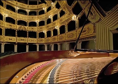 What could be more elegant than a private concert in one of Europe's oldest theatres, built by a Grandmaster of the Knights of Malta...