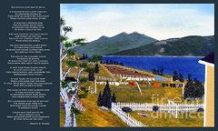 Barbara Griffin Clothesline Images - The Clothesline  by Barbara Griffin