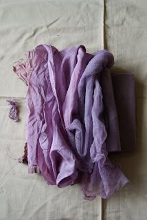 clarabella: elderberry dye