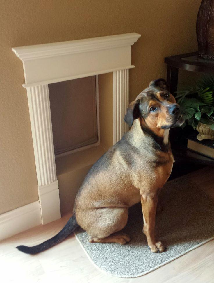 51 Best Doggy Doors Images On Pinterest Doggy Doors Dog