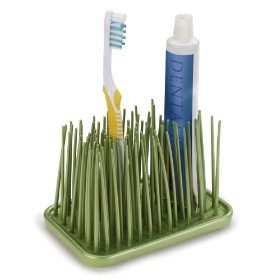 Bathroom Grass Organizer For Your Toothbrush And