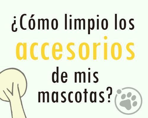 ¿Como limpio los accesorios de mis mascotas?  https://www.facebook.com/notes/orbita-pets/amigos-orbita-petscomo-limpio-los-accesorios-de-mis-mascotas/548134131996880