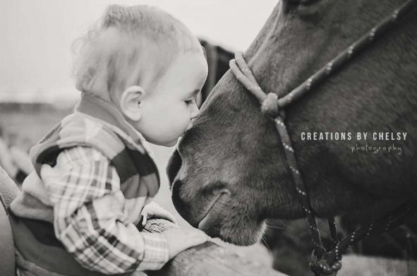 western family photos, cute pose with horse  one year old photos