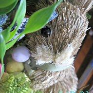 Rabbit Burrow Spring Wreath#/1111806/rabbit-burrow-spring-wreath?&_suid=136308034624502525141056549616