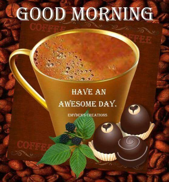 Good Morning Have An Awesome Day Morning Good Morning Morning Quotes Good  Morning Quotes Good Morning Greetings