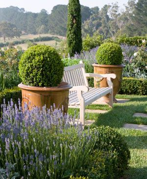 Coastal garden design. Paul Bangay. Now I wished my garden looked like this.