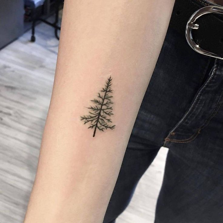 """11.4 k mentions J'aime, 25 commentaires – tiny tattoos (small tattoos) ⤴ (tiny little.tatts) sur Instagram : """" That's so cute ⚊⚊⚊⚊⚊… -…"""